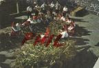 Minho - Effenillage, Ref 1108-1605/06 - Ohne Zuordnung
