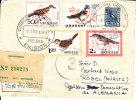 Uruguay, Entier 1963, Vignet Montevideo Europa Ofic. Exterior, Por Avion (4395) - Pájaros