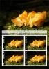 MUSHROOMS FUNGI MOLDS SOUVENIR SHEET MNH IMPERFORATED CINDERELA - Funghi