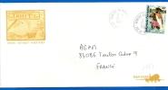 Polynésie Française - Timbre Sur Enveloppe Illustrée (1381) Centre Tri Avion FAAA - 1993 - Sin Clasificación
