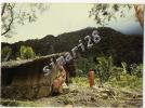 COMORES - ANJOUAN - DEMEURE PAYSANNE ( CPM ) - Comores