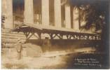 Seattle WA Washington State Museum University Of WA, Giant Tree Log, C1910s Vintage Real Photo Postcard - Seattle