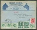 BELGIQUE - DOG - TB Lettre Affr. Lions + Z. Gramme à 2Fr.35 Obl. Sc BRUXELLES 1 S/L. Illustrée (Select-Kennel à BERCHEM- - Dogs