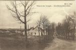 THAON LES VOSGES - LES NOUVELLES CITES - Thaon Les Vosges