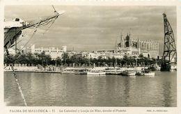 Espagne - Islas Baleares - Mallorca - Palma De Mallorca - La Catédral Y Lonja De Mar, Desde El Puerto - état - Palma De Mallorca