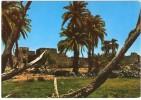 JORDAN/JORDANIE - DESERT CASTLES-AZRAQ CASTLE & OASIS - Giordania