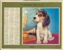 ALMANACH DES PTT  1969 RHONE - Calendars