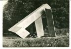 CPSM FORET DE SENART Hameau De La Faisanderie Sculptures En Plein Air M TUAL Pierrcik Sculpteur - Non Classés