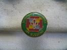 Pin´s Des Scouts De FRANCE De BUSSANG (88) - Zonder Classificatie