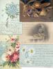PEDRO, EMILIO Y MARIA LUISA ALIVERTI PEQUEÑA PARTE DE SU COLECCION DE POSTALES - Postkaarten