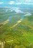 CPSM De ARCACHON (33120) : Vue Du Bassin à Marée Basse.. - Arcachon
