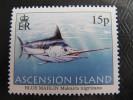 5688 Marlin Bleu Espadon Fish Oisson Mer Migration Makaira Nigricans île Island - Peces