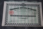 BANANERAIES DE FOULAYA - Paris 1928.Cie Agricole De La Guinée Française SCRIPOPHILIE - Afrique