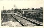 Houdemont - La Grande Ligne Du Chemin De Fer Ostende-Bâle - Habay