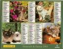 ALMANACH DES PTT  2003 RHONE - Calendars