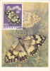 Butterflies,Papillons 1982 CM,maxicard,cartes Maximum Hungary. - Butterflies