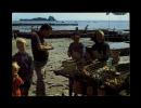 35 - CANCALE - La Vente Des Huîtres Sur Les Parcs - 11 - Cancale