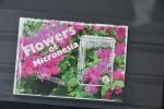 C 82 ++ MICRONESIE 2011 FLOWERS FLEUR BLOEMEN PLUMERIA  MNH ** - Micronesië