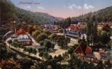 AK Alexisbad I. Harz Gelaufen Color Bpst. Ansehen !!!!!!!!!! - Ohne Zuordnung