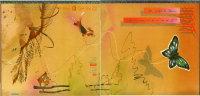 * LP *  HEART - DOG & BUTTERFLY (Holland 1978) - Rock