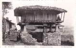 18144- Oviedo, Espagne - Horreo Asturiano , Grenier Asturien. Roisin-foto 82
