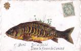 18212- 1er Avril Poisson Peche - Péché Dans Le Fleuve De L'amitié