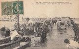 """17 CHATELAILLON Bord De MER Animé  ATTELAGES Chevaux  """" Les BOUCHOLEURS Chargent Les Paniers De MOULES """" En 1920 - Châtelaillon-Plage"""