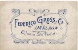 Malaga Propaganda Federico Gross Malaga Colonia Sta Tecla - Málaga