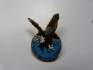 Superbe Broche ( No Pin´s )  Birds Of Prey - Beaver Creek , Ski , Aigle Vautour , USA , En EGF - Ciudades