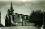 81 PUYLAURENS L'Eglise Et Place De La Volailles - Puylaurens