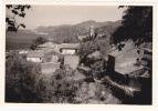 Corse - Pino - Cote Ouest Du Cap Corse - 4 Août 1964 - Lieux