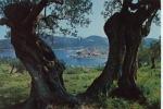 Poros Partial View 1979 - Grèce