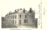 CHAMPIGNY-en-BEAUCE  -   Château De La Fontaine - Autres Communes