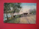 - Nebraska > Omaha   Cows By  Carter Lake Ca 1910     ==   == Ref 273 - Autres