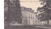 18367 DOMLOUP -- Château De La Chauvelière ; 1719 Lamiré .