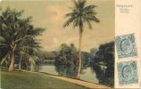 SINGAPORE BOTANIC GARDEN - Singapour