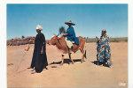 Tchad. Afrique En Couleurs. Scène Africaine. IRIS 5896. Photo Hoa-Qui - Tchad