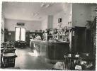 Blois /  Bar Hotel Restaurant A L' Escargot D'Or / Louis Melon / Av Victor Hugo / Bon état // 2/436 - Blois