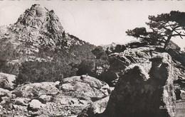 CORSE - La Pointe Du Diamant. Ed. La Cigogne. Voyagée 1953 - France