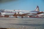 LOCKHEED  ELECTRA      GNA  ALASKA   N669F - 1946-....: Moderne
