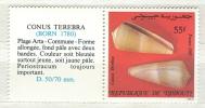 Djibouti MNH Stamp - Conchiglie