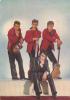 18503 Chats Sauvages . 244 Photo Sam Levin EDUG France . Rock Guitare Blousons Noirs - Musique Et Musiciens