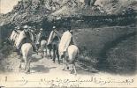 Départ Oran- SPAHIS ALGERIENS  En Manoeuvre  ( Voir Verso Cachet Militaire  ) - Régiments