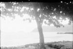 M19 - POULO CONDORE - CON SON Vietnam - 3 Négatif Photos 1938 Indochine - Luoghi