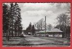 CPSM: Saint Nicolas En Foret (57) Boulevard Des Vosges - France