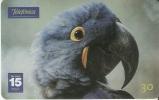 TARJETA DE BRASIL DE UN PAPAGAYO (PARROT-LORO-BIRD-PAJARO) - Loros
