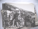 Joego Slavië Jugoslavija Kroatië Croatia Dubrovnik Seherezada - Kroatien