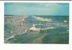 JACKSONVILLE - La Plage - Jacksonville