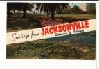 JACKSONVILLE -memorial Park And Park Lane Apartments , Basseball Park And Matthew's Bridge - Jacksonville