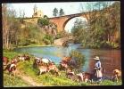 CPM Animée PIERRE PERTHUIS  Environs De Vézelay  Petit Village Pittoresque Dominant La Vallée De La Cure  Chèvres - France